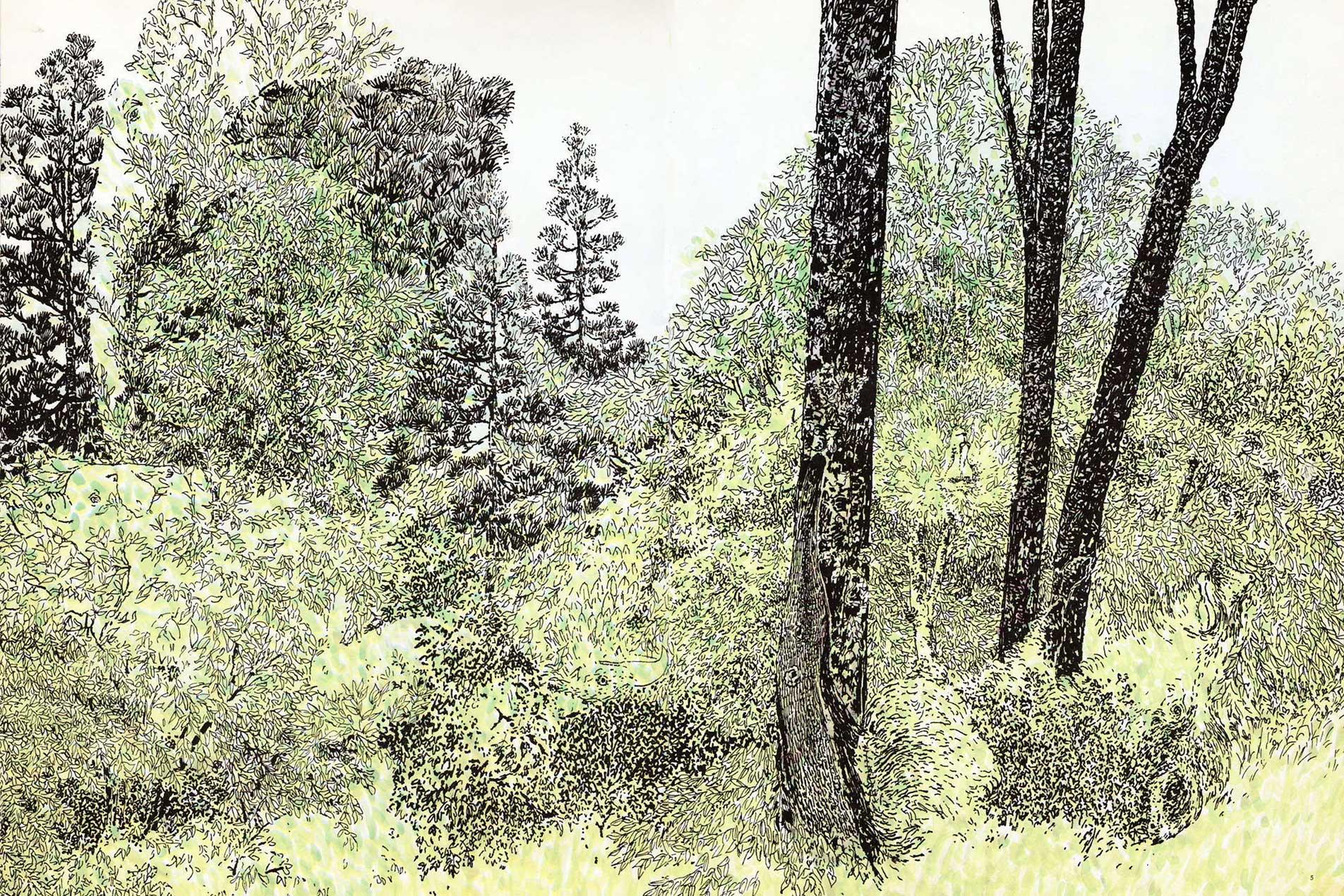 Het-bos-van-Anno-kl